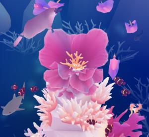 バレンタインサンゴ